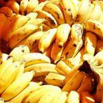 Banánová dieta nejenom na hubnutí