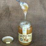 Kaštanový med a zdraví – jaké má účinky a proč si ho dát?