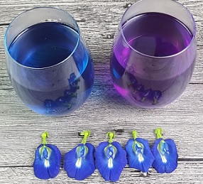 Proč si dát modrý čaj? Podívejte se na jeho účinky.