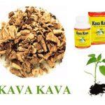 Kava kava (Pepřovník opojný, Kawa-Kawa) a její účinky na zdraví. Jak pomůže kava kořen?