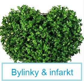 Které bylinky jsou vhodné jako prevence infarktu?