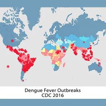 Toto je mapa oblastí, které jsou z pohledu nákazy horečkou Dengue nejnebezpečnější.