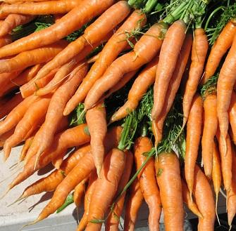Mrkev je úžasná zelenina. Pustíte ji k sobě do kuchyně?
