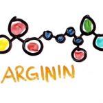L-arginin a jeho účinky na naše zdraví