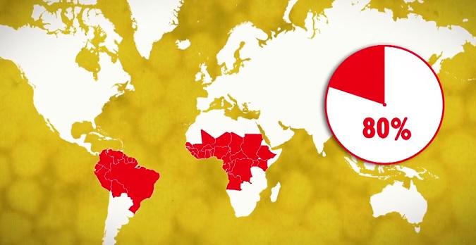 Nejčastěji se žlutá zimnice vyskytuje v Africe a Severní Americe.