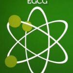 Epigallocatechin galát (EGCG) – jaké má účinky na naše zdraví?