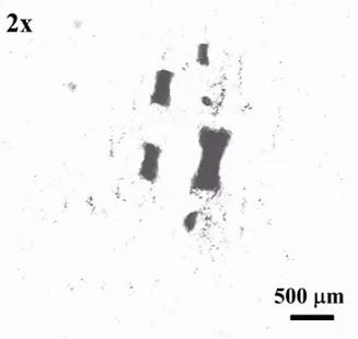 Nanoroboti jsou schopni napodobovat rojovité chování.