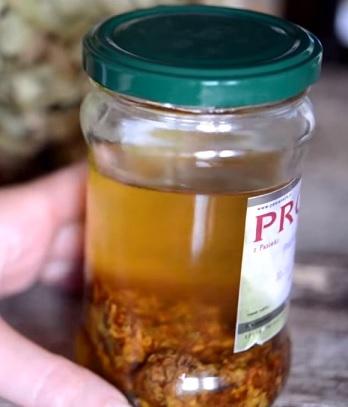 Někteří vědci říkají, že propolis je antibiotikum 21. století.