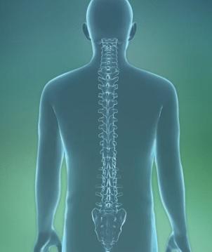 Radikulopatie nebo stlačený nerv v páteři může vést k řadě nepříjemných příznaků, včetně bolesti, slabosti a necitlivosti. V tomto článku se podíváme na to, jak se může tento stav vyskytnout, spolu s jeho příznaky, diagnózou a léčbou.