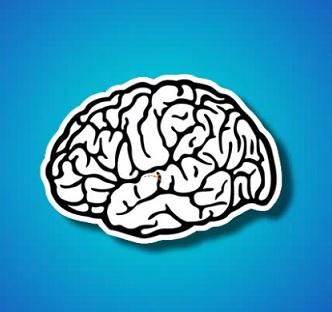 Většina neurotransmiterů je buď malými aminovými molekulami, aminokyselinami nebo neuropeptidy.