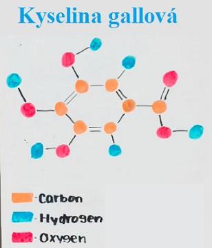 Kyselina gallová je organická kyselina, která se nachází v duběnkách, ořeších, dubové kůře, čajových lístcích a v dalších rostlinách.