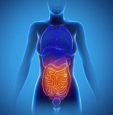 Lynchův syndrom je jedním z nejčastějších dědičných onkologických syndromů