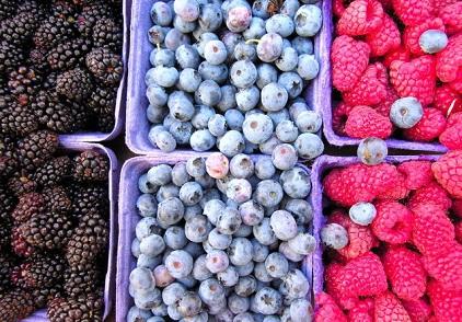 Zdrojem antokyanů jsou zejména bobule jako borůvky, černý rybíz, ostružiny, maliny, jahody.  Ale tyto látky jsou i v některých druzích zeleniny. Třeba v červené cibuli.