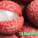 Oligonol a jeho účinky na zdraví – jak vám může pomoci?