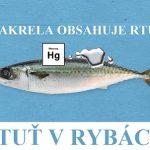 Rtuť v rybách a účinky na zdraví – co je dobré vědět