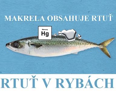 Rtuť v rybách