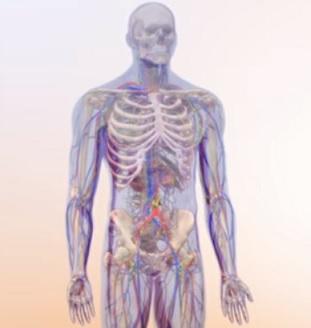 Dědičná amyloidóza je onemocnění geneticky podmíněné, progresivní a postihuje více orgánů v těle