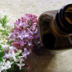 Šeřík a šeříkový olej – jaké mají účinky na naše zdraví?