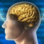 """Hluboký spánek potřebujeme – pomáhá """"vypláchnout"""" toxiny z mozku"""