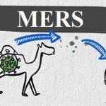 Onemocnění MERS (Blízkovýchodní respirační syndrom) – co je to – příznaky, příčiny a léčba