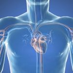 Srdeční katetrizace (katetrizační vyšetření srdce) – co je to a jak probíhá?