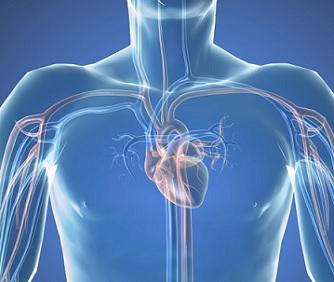 Srdeční katetrizace (katetrizační vyšetření srdce) - co je to a jak probíhá?