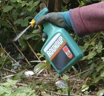 Roundup a jiné herbicidy mohou mít negativní vliv na naše zdraví