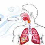 Kokcidioidomykóza – co je to – příznaky, příčiny a léčba