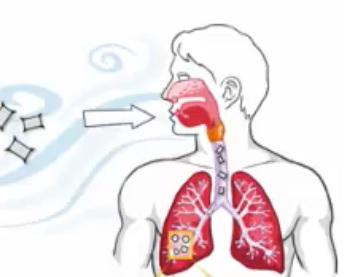 Kokcidioidomykoza je mykotické onemocnění způsobené Coccidioides immitis nebo C. posadasii.