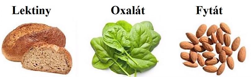 Antinutrienty najdete zejména v rostlinných poravinách
