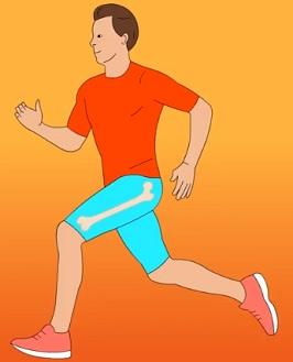 Jak přispět ke zdravé hustotě kostí?
