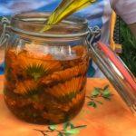 Super olej z měsíčku lékařského – recept na jeho výrobu + účinky