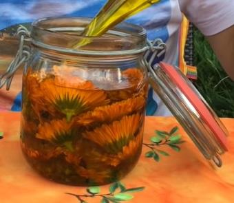 Zkuste si udělat olej z měsíčku lékařského i doma.
