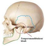 Temporomandibulární (čelistní, žvýkací) kloub – jeho poruchy a problémy