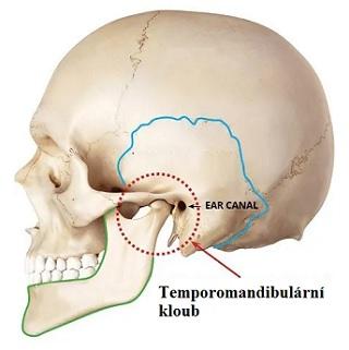 Temporomandibulární (čelistní, žvýkací) kloub - jeho poruchy a problémy