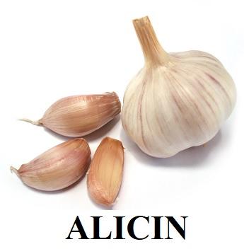 Jaké zdravotní výhody má aminokyselina Alicin?