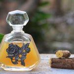 Olej z lékořice – jaké má účinky a kdy ho použít?