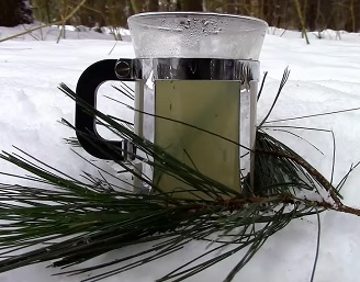 Čaj z borovicového jehličí  prospívá mysli, tělu i duši mnoha způsoby.