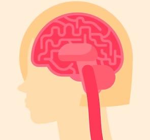 Sclerosis multiplex je nejčastější onemocnění centrálního nervového systému