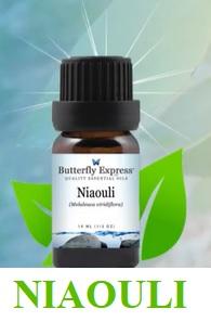 Esenciální olej z niaouli - účinky a kontraindikace