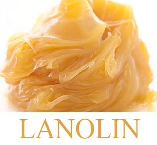 Takto vypadá lanolin