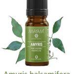 Esenciální olej Amyris (Amyris balsamifera) – účinky, vlastnosti, kontraindikace