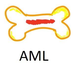 Akutní myeloidní leukémie - úmrtnost, příznaky, příčiny a léčba