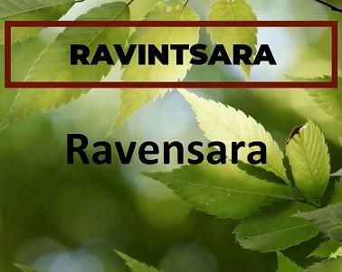 Esenciální oleje Ravensara versus Ravintsara - jaký je mezi nimi rozdíl?