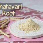 Znáte účinky Shatavari (chřest hroznovitý, Asparagus racemosus) na zdraví?