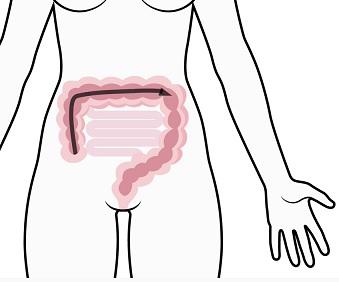 Proč menstruaci často doprovází průjem?
